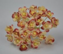 1.3cm COOPER RUSTY / CREAM DOUBLE-LAYERED Daisy Mulberry Paper Flowers